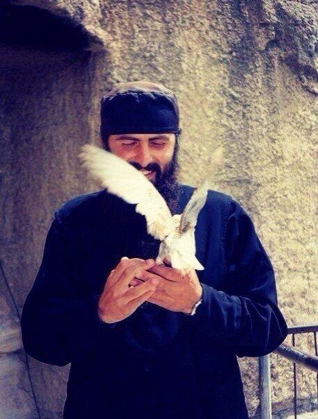 монах и голубь