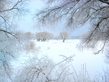 река Жиздра зима 2013