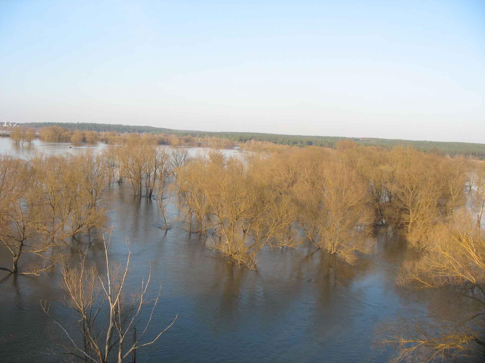 Козельск-Оптина-паводок2013